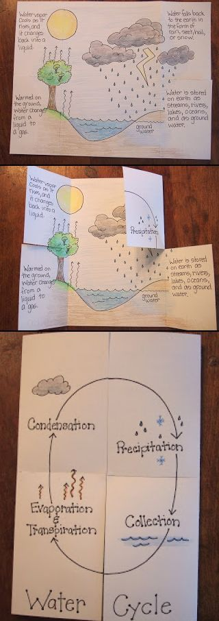 Water Cycle Foldable. need to use with 6th grade...notice how the book physically represents the water cycle...not just a worksheet