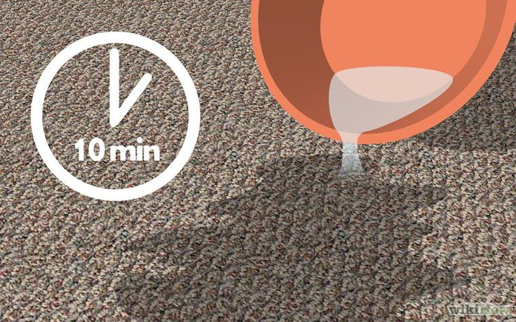 how to clean dog urine out of carpet with vinegar