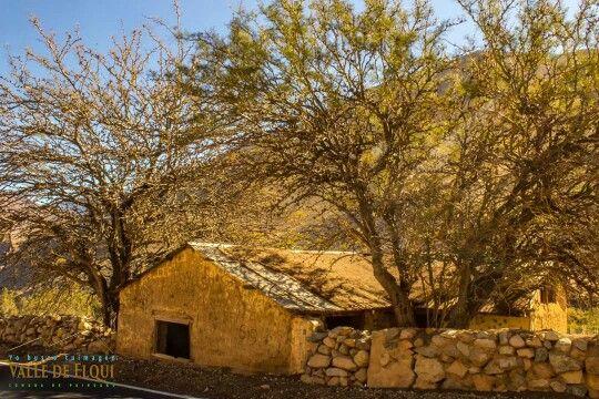 Paihuano. Valle de Elqui.
