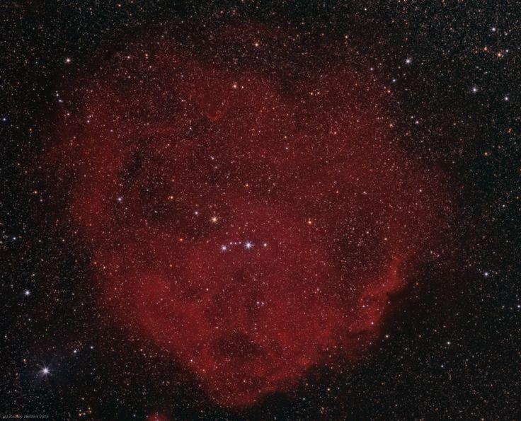 El catálogo Sharpless: la Nebulosa del Pez Escalar (Sharpless 264). Recibe ese nombre por su apariencia visual, y también es conocida como el Anillo de Lambda Orionis, por su aspecto al observarla en infrarrojo. Curiosamente, es la combinación de una región de formación de estrellas y los restos de una supernova, que debió explotar hace 1 millón de años. #astronomia #ciencia