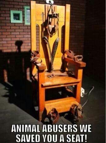 https://i.pinimg.com/736x/af/f1/24/aff124b921629fa310a90e3b46f98ba1--dog-leg-social-justice.jpg