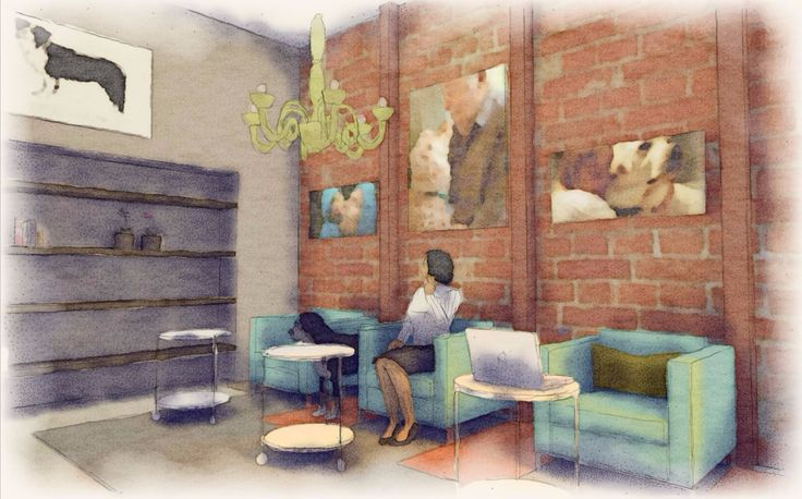 Marin County Interior Design Dog Lounge