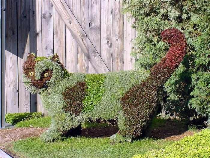 Kitty Garden Sculpture, Love It, The Mosaiculture International Exposition  In Montreal, Quebec Of 2013