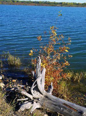 Glenmore Lake South side Calgary Alberta