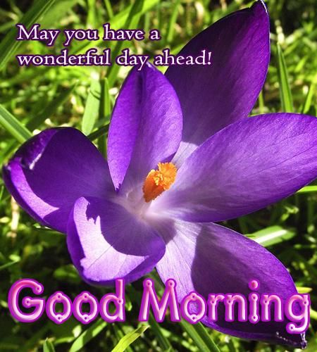 Good+Morning+Greetings | Sweet Good morning Messages | https://www.facebook.com/queenkingcandles