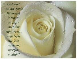 Condoleance
