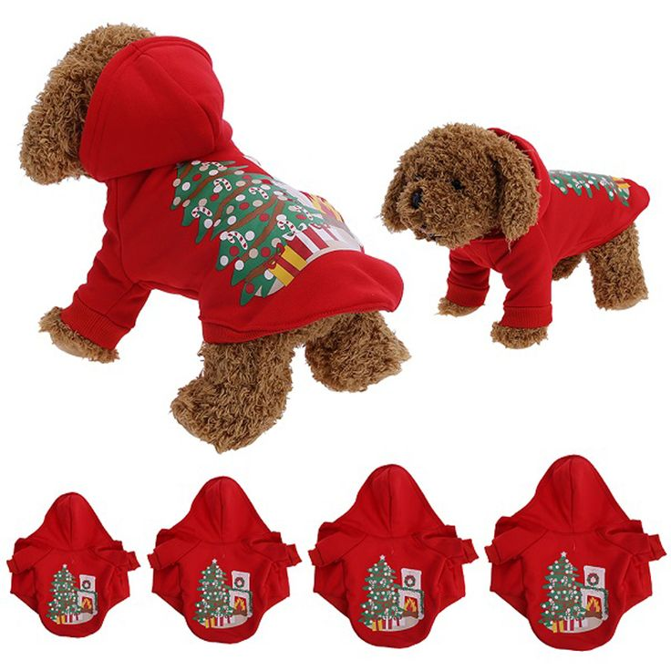 Best 25+ Dog christmas outfits ideas on Pinterest ...