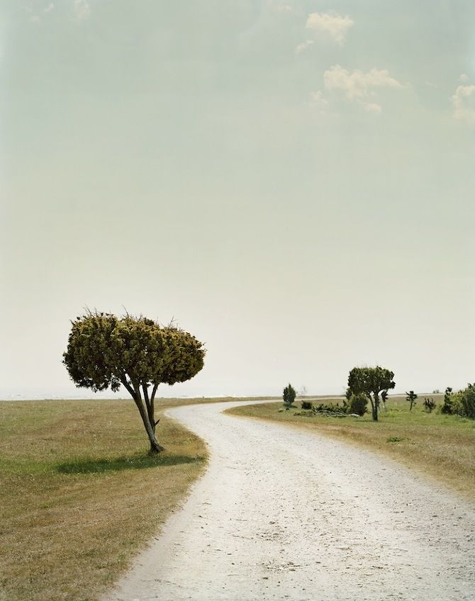 Landscapes by Felix Odell