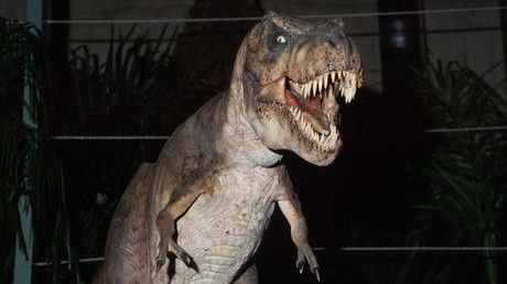 Dinosaur-slaying asteroid metal can eradicate cancer, research suggests https://tmbw.news/dinosaur-slaying-asteroid-metal-can-eradicate-cancer-research-suggests  Cancer cells can be destroyed using the same metal from the asteroid believed to have caused the dinosaurs' extinction.Research by the University of Warwick in the UK and Sun Yat-Sen University in China found the dense metal, iridium, can be used to kill cancer cells by directly targeting them and filling them with a deadly…