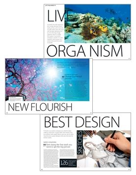 """Some of articles/graphics from """"amazing"""" magazine"""
