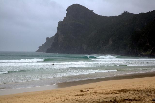 Surfing Northland new Zealand