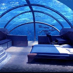 Underwater bedroom, how cool! It is 40 feet under the sea, and truly breathtaking. How much would you give for something like this?Guest Room, Poseidon Hotels, Buckets Lists, Favorite Places, Dreams, Resorts, Underwater Hotels, Underwater Room, Places I D