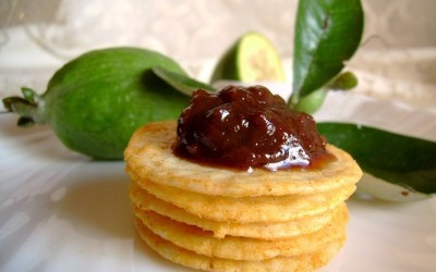 Feijoa Chutney  For Feijoa Chutney You Need:    1.25kg feijoa pulp  500g onions, chopped  600ml vinegar  1kg brown sugar  1/2 packet mixed spice (15g)  625g apples, peeled and sliced  1 tbsp salt  1 small 1/2tsp cayenne pepper    Method    Put all together in a large saucepan, bring to the boil and boil for one hour and pour into sterilized jars. Seal.
