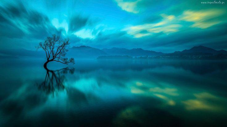 Góry, Mgła, Zorza, Polarna, Jezioro, Drzewo