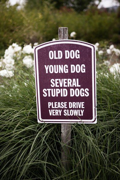 Uh yeh I should probably have this on my driveway along with the warning of a horse, goats and several non-Einstein cats