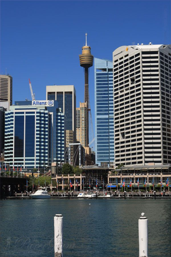 Darling Harbour and Cockle Bay with Sydney Tower - Skytower - Sydney, New South Wales, Australia