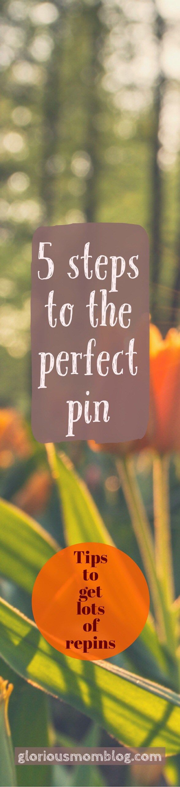 5 steps to the perfect pin: Blog traffic not where you want it to be? Check out my tips to get more repins. See the list at gloriousmomblog.com.