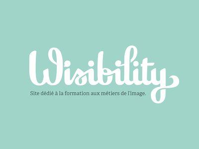 Wisibility Финал Логотип