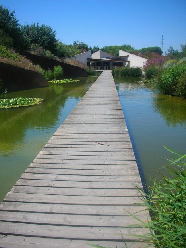 Spanish Landscape Architecture Barcelona Botanical Garden