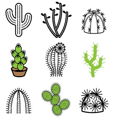 Logo icons cactus vector 1541105 - by andegra on VectorStock®