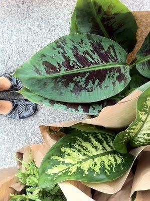 greenery | badcrafter