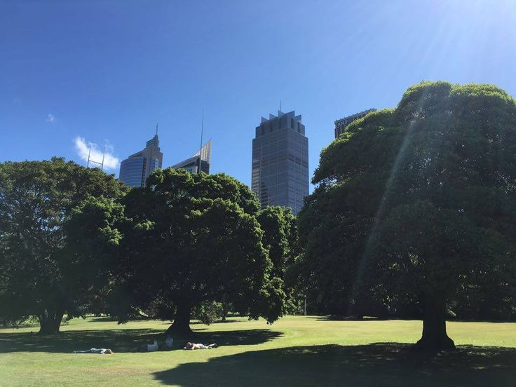 There are so many gorgeous spots around Sydney and to be honest with the busy life and puzzle that being toddler parents in Australia entails we do not manage to do many excursions which are more advanced than the local beaches. But the other day we