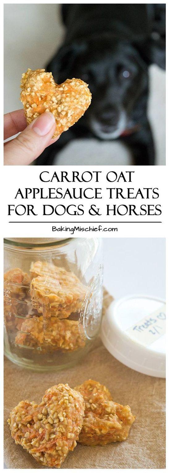 Carrot Oat Applesauce Treats