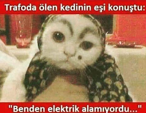 #�� #sinem #instalife #mutluluk#komedi#karikatür#kedi#komik#komedi #koptum #Hahahaha#karikatur#mizah #gülmece#elektrik http://turkrazzi.com/ipost/1521208176454927603/?code=BUcasbbBATz