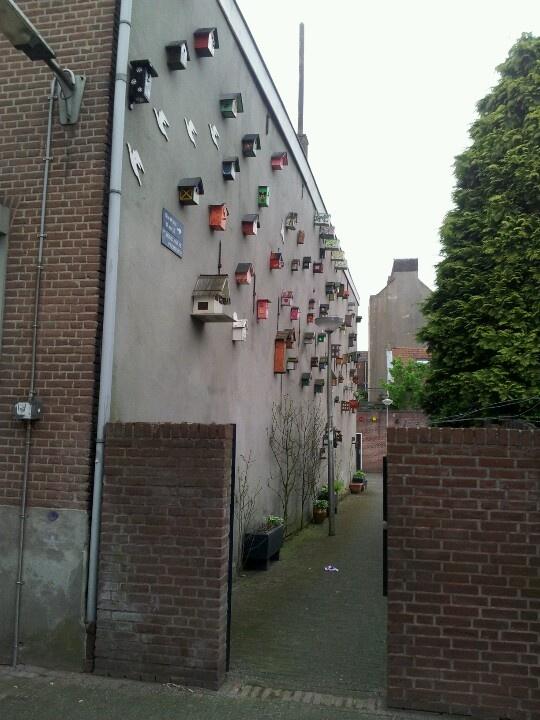 @Nijmegen benedenstad
