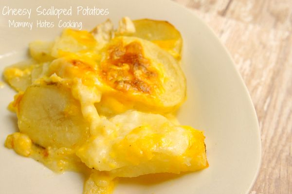 Cheesy Scalloped Potatoes, great for Thanksgiving. Can be made regular or #GlutenFree