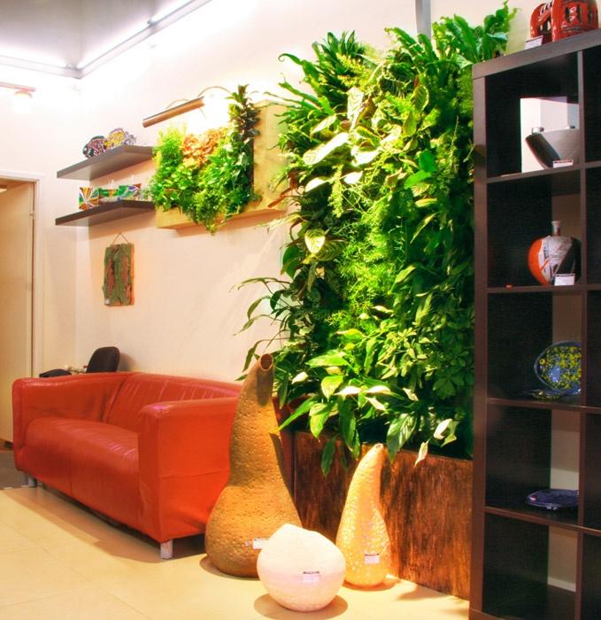 Фитостены — стены из растений, вертикальные сады | Компания Rastenia.  Green walls - walls of plants, vertical gardens | Company Rastenia