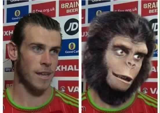 Walijczyk podobny jest do małpy • Gareth Bale wywodzi się z planety małp • Śmieszne zdjęcia w piłce nożnej • Wejdź i zobacz więcej >> #bale #garethbale #football #soccer #sports #pilkanozna #funny #memes