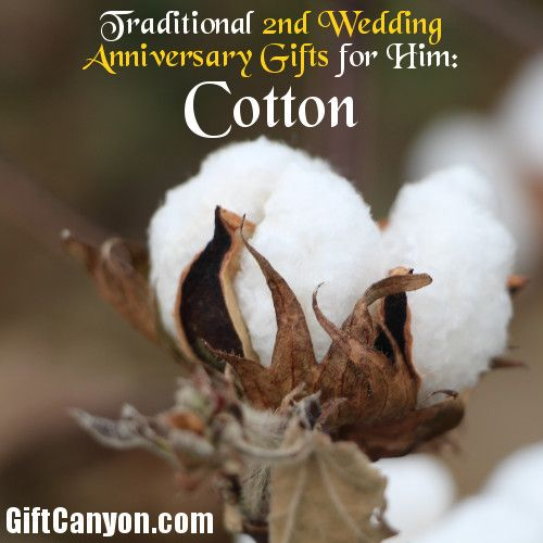 Traditional 2nd Wedding Anniversary Gifts For Him Cotton