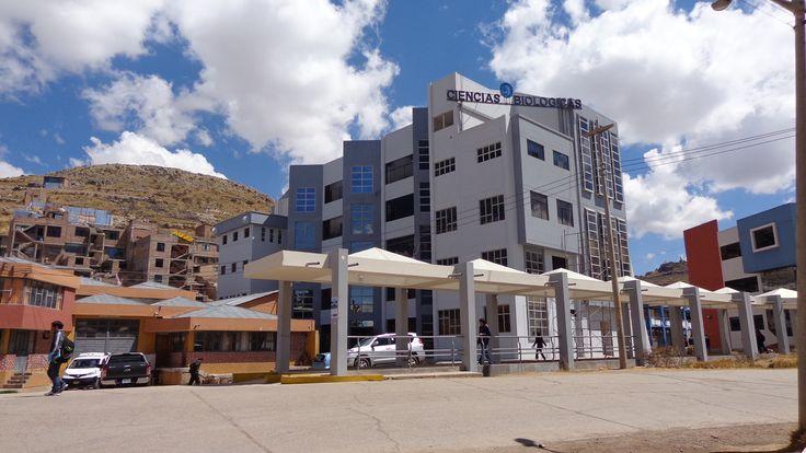 Facultad de Ciencias Biológicas de la Universidad Nacional del Altiplano.  Foto: Octubre 2014.