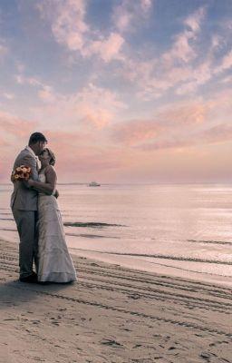 Brisbane Wedding Photographer - Trained Brisbane Wedding Photographer #wattpad #short-story