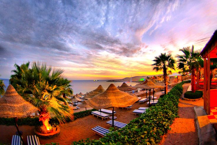 Hd Tropical Island Beach Paradise Wallpapers And Backgrounds: Best 20+ Tropical Wallpaper Ideas On Pinterest