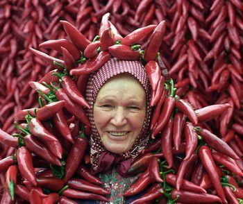Mezőgazdaság - Kiváló fűszerpaprika-termés Boldogon