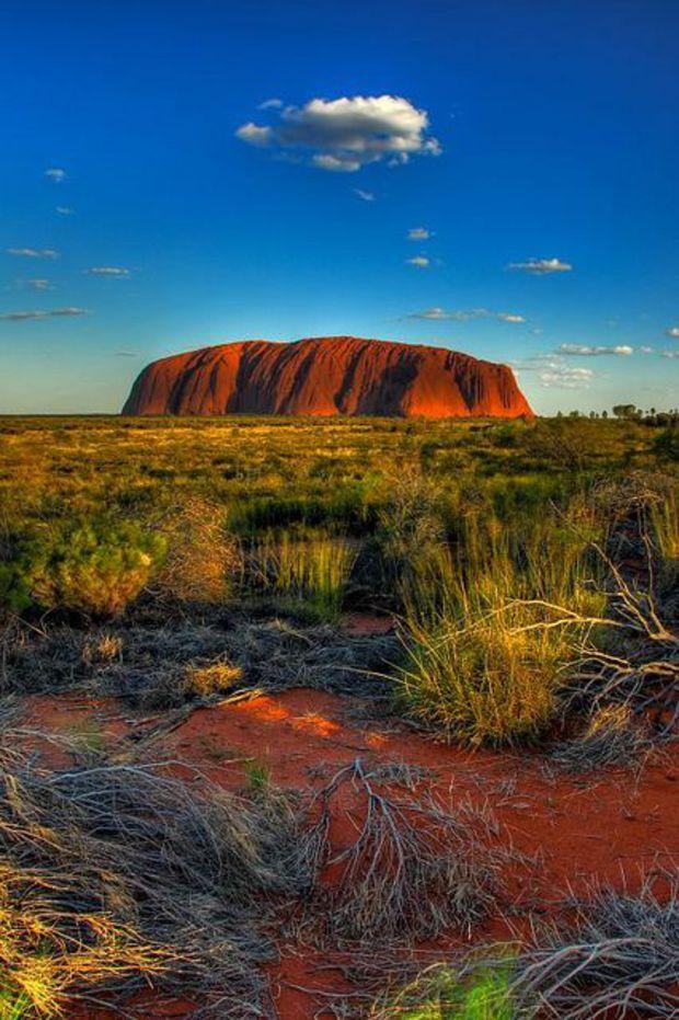 Le mont Uluru, situé au cœur de l'Australie, est le Saint Graal des nombreux voyageurs qui sillonnent chaque année les routes solitaires du désert australien. Cet étonnant rocher semble avoir été posé au beau milieu d'un plateau aride au relief monotone, sur lequel ne survivent qu'une faune et une flore réduites.