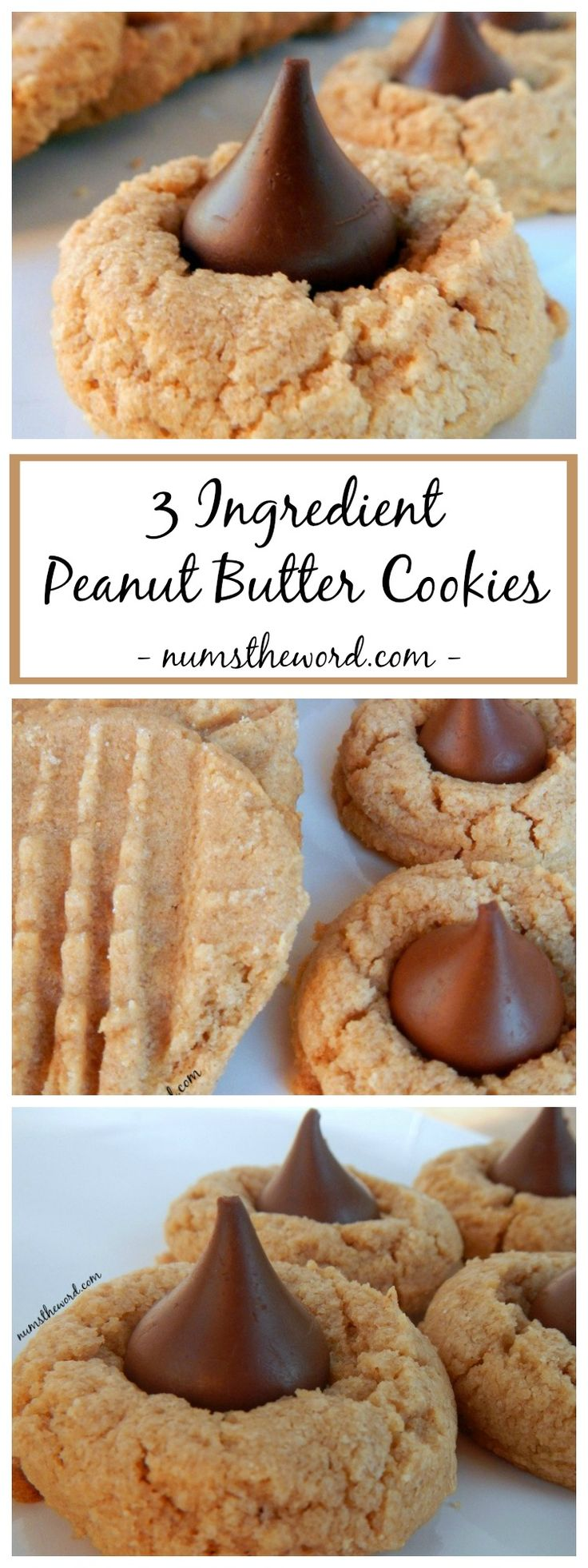 If you love peanut butter cookies, you should try this classic 3 ingredient peanut butter cookie recipe. Enjoy these the traditional way or with a kiss!