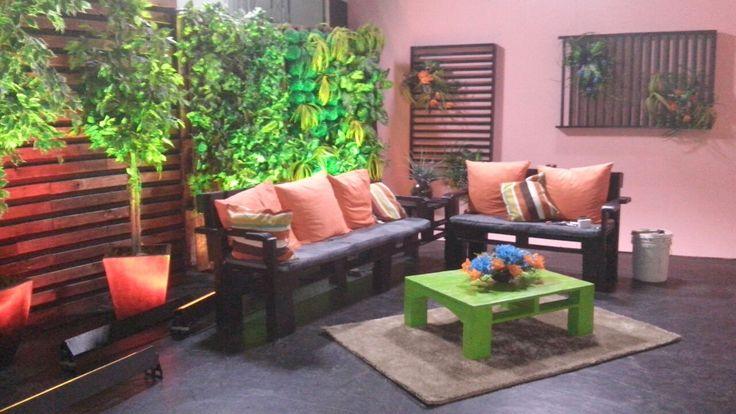 Paisajismo y riegos Greenbox patrocinó el jardín vertical artificial para el foro de grabación del programa Ya es hora del Sistema Chiapaneco de Radio, Televisión y Cinematografía.