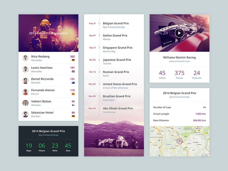 F1 App by Piotr Kwiatkowski in 36 Mobile UI Designs for Your Inspiration