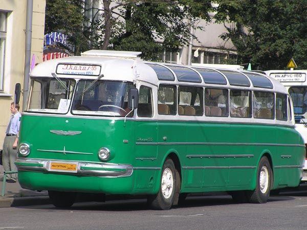 Ikarus-55 (Икарус-55)