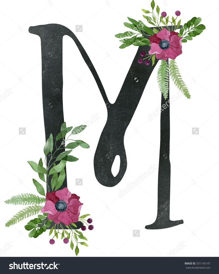 Monogram letter M made of black chalkboard background and floral composition from red wine color anemone