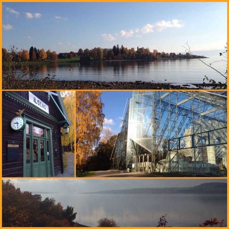 Domkirkeodden, Hamar