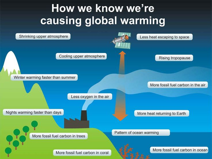 89 best global warming images on pinterest global warming climate infographic how we know were causing global warming ccuart Images
