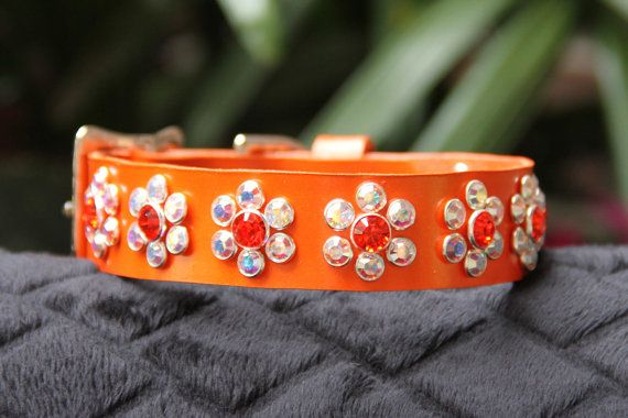 Orange Pearl Leather Dog Collar with Swarovski by JustForBella, $109.00