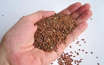 Domáca Medicína - Jedla ľanové semienka každý deň po celý mesiac a…