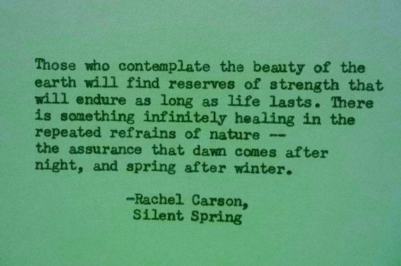 RACHEL CARSON NATURE Earth Day Quote Hand Typed Quote Made With Adorable Rachel Carson Quotes
