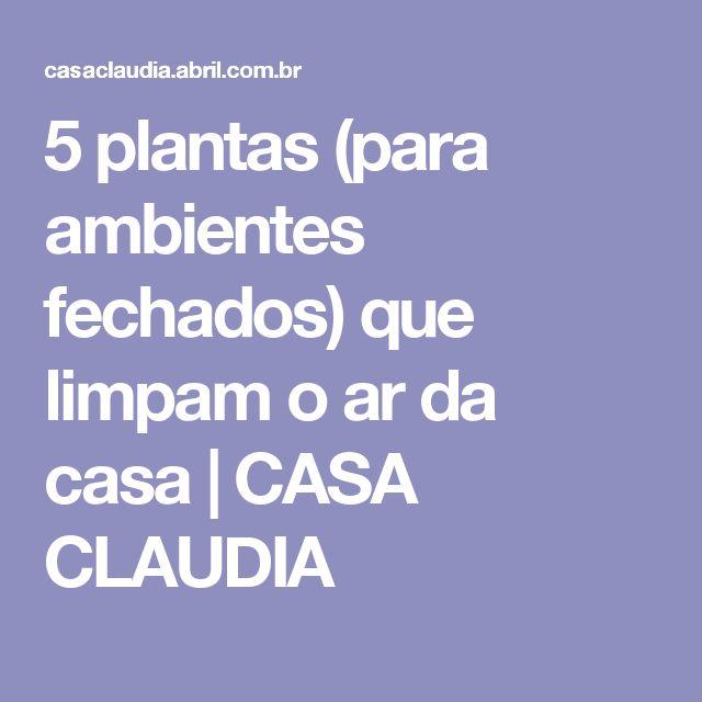 5 plantas (para ambientes fechados) que limpam o ar da casa | CASA CLAUDIA