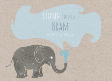 Enkel hip geboortekaartje in trendy uitvoering met grijs kartonnen achtergrond. Vrolijke olifant die water spuit, hierin staat de tekst voor de geboorte van uw kindje.